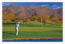 SBR_golfsmall